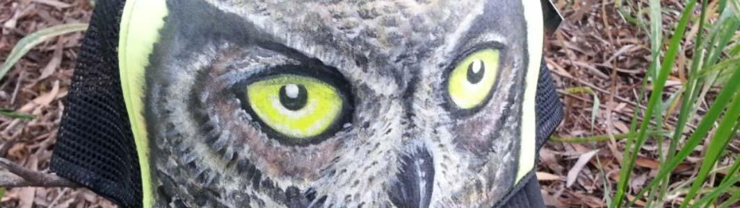 cat-banner-animal